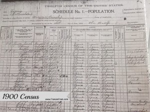 The 1900 Census provides plenty of personal date: names, relationships, race, age, place of birth, relationships, occupation, literacy, and home ownership.